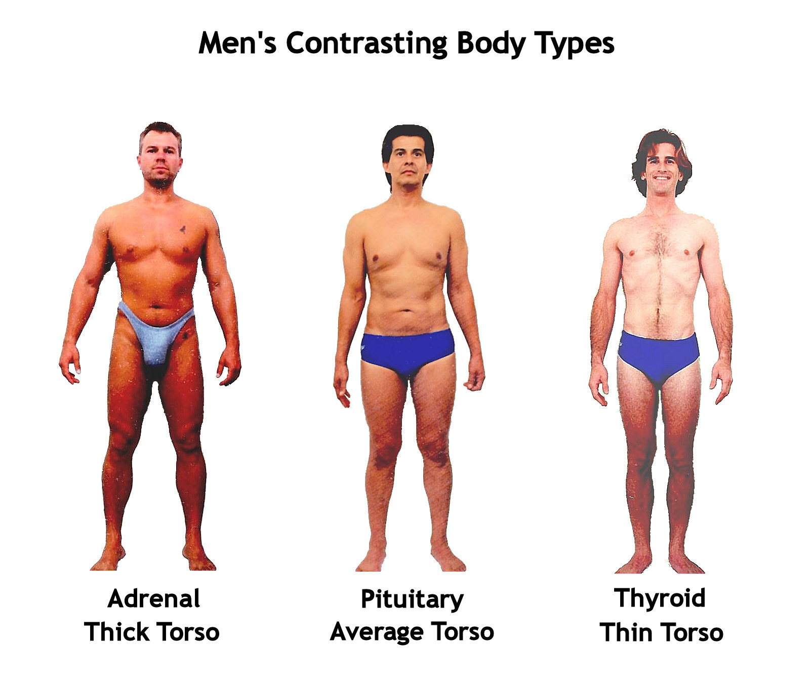 Body Shape Pictures | Body Type Pictures
