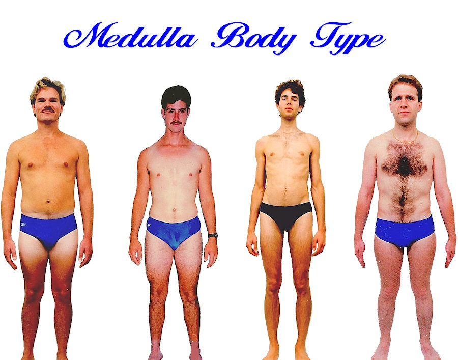 Mens Medulla body shape